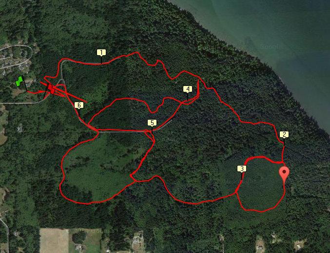 Dugualla State Park trail run