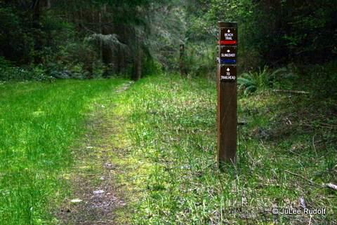 Dugualla State Park trail marker