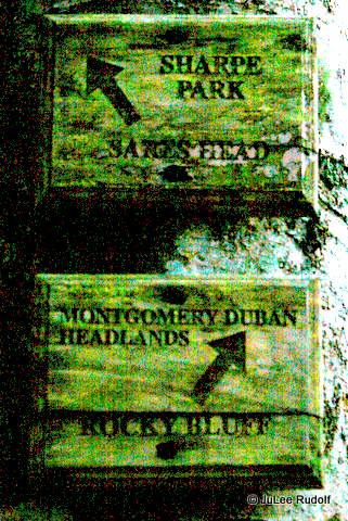 Trail marker at Sharpe Park / Montgomery Duban Headlands