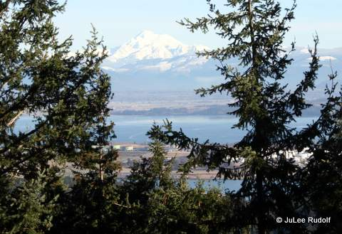 Mount Baker viewed from Mount Erie