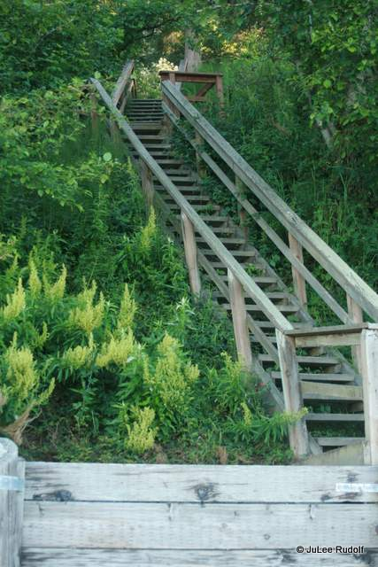 stairs to beach at South Whidbey State Park