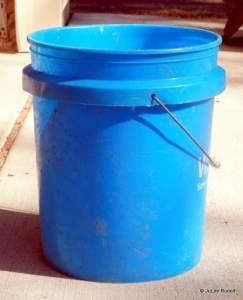 utility bucket for shellfish harvesting