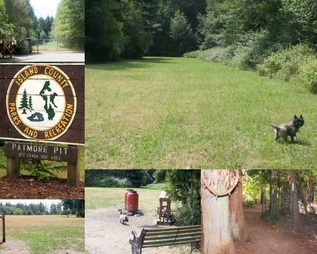 Patmore Pit Dog Park