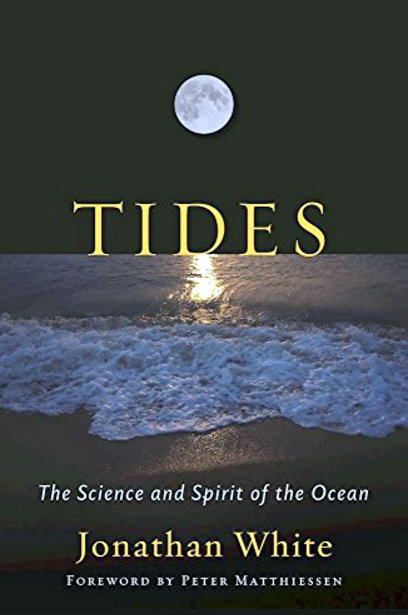 tides-2-14-2017-11-42-24-am