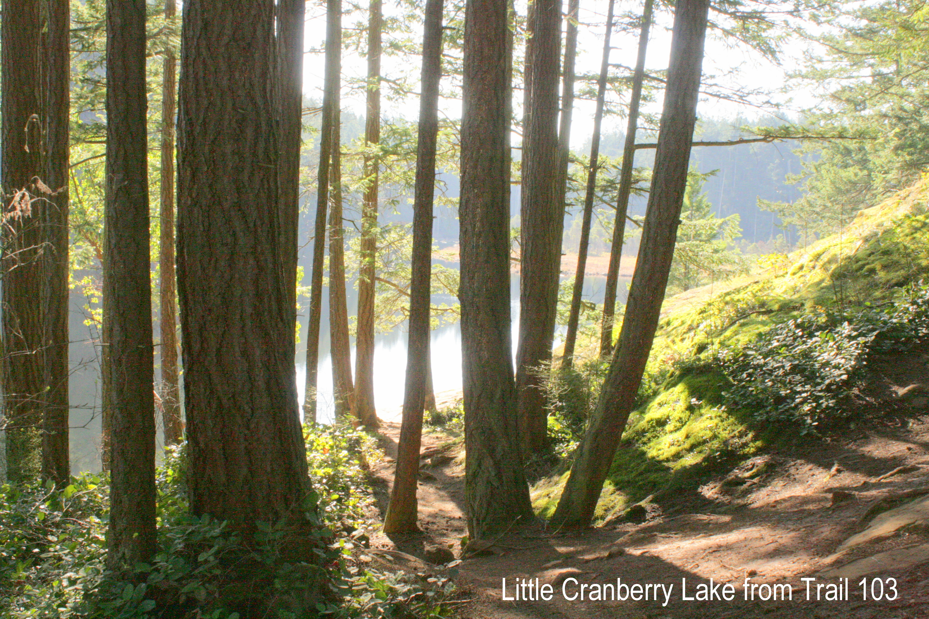 trail 103 3-5-2015 10-25-13 AM