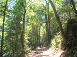 trail 22 8-1-2009 3-21-43 AM