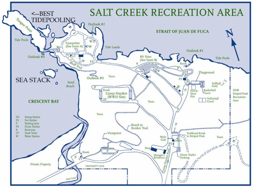 SALT CREEK